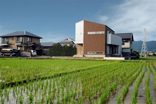 hirashima1_t.jpg